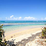 Turquoise Beach Hideaway In Vieques Art Print
