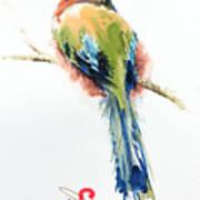 Turquoise-browed Motmot  Bird Art Print