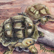 Turtle Friends Art Print