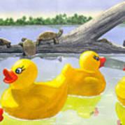 Turtle Log Art Print