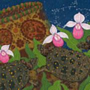 Turtle - Mihkinahk Art Print