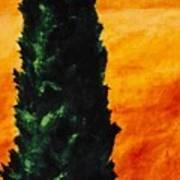 Tuscan Cypress Art Print