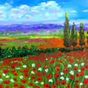 Tuscany Poppies Field Art Print