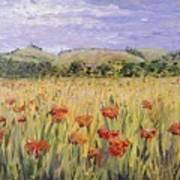 Tuscany Poppies Art Print by Nadine Rippelmeyer