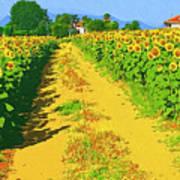 Tuscany Sunflowers Art Print