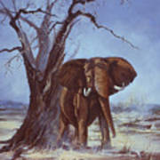 Tusker Art Print
