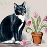 Tuxedo Cat Sitting By The Pink Tulips  Art Print