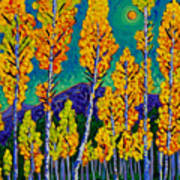 Twilight Aspens Art Print