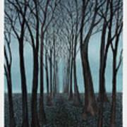 Twilight Forest Art Print