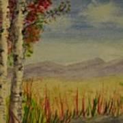Twin Birch Trees Art Print