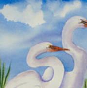 Twin Egrets 2 Art Print