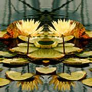 Twin Pond Lillies Art Print