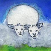 Twin Sheep Art Print