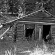 Two Cabins One Outhouse Art Print