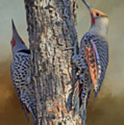 Two Flickers Art Print