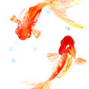Two Goldfish Feng Shui Art Print