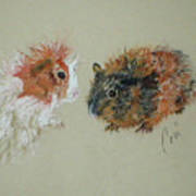 Two Guineas Art Print