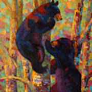 Two High - Black Bear Cubs Art Print