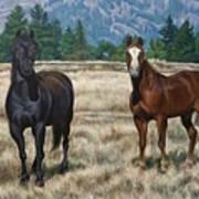 Two Horses Art Print