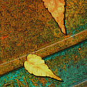 Two Leaves Or Not Two Leaves Art Print