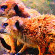 Two Meerkats . Photoart Art Print by Wingsdomain Art and Photography