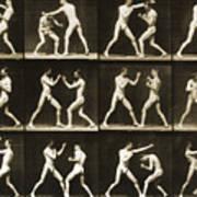 Two Men Boxing Art Print