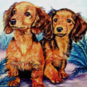 Two Peas In A Pod - Dachshund Print by Lyn Cook