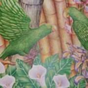 Two Perrots Art Print
