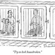 Two Prisoners Sit In Separate Dog Kennel Cells Art Print