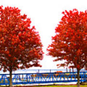 Two Red Trees Art Print