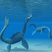 Two Sea Dragons Art Print