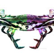 Two Sides - Duality Crab Art Art Print