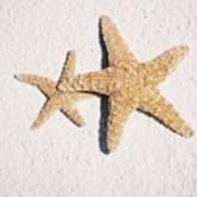 Two Starfish On The White Sand Art Print