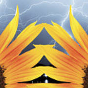 Two Sunflower Lightning Storm Art Print by James BO  Insogna