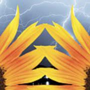 Two Sunflower Lightning Storm Art Print