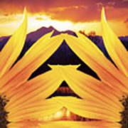 Two Sunflower Sunset Art Print