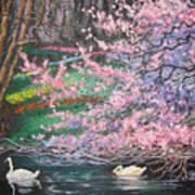 Two Swans Art Print
