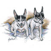 Two Toy Fox Terriers Art Print