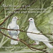 Two White Doves Philippians Art Print