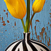 Two Yellow Tulips Art Print by Garry Gay