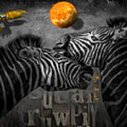 Two Zebras And Macaw Art Print