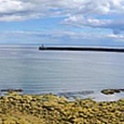 Tynemouth Piers And Lighthouses Panorama Art Print