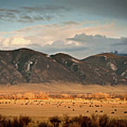 Under  Big Skies Of Montana Art Print by Doug van Kampen, van Kampen Photography
