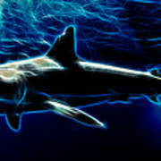 Under Blue Sea Art Print