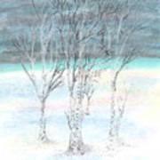 Under Northern Skies Art Print