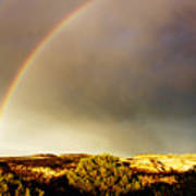 Under The Rainbow Art Print