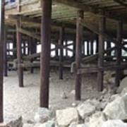 Under The Santa Barbara Pier Art Print