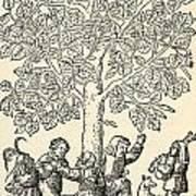 Under The Village Linden Tree Art Print