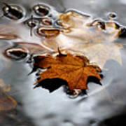 Under Water Fall Art Print
