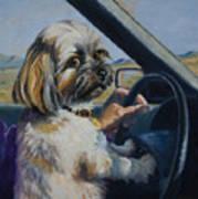 Underage Driver Art Print